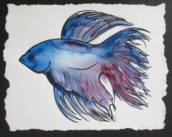 Beta Fish Series #3
