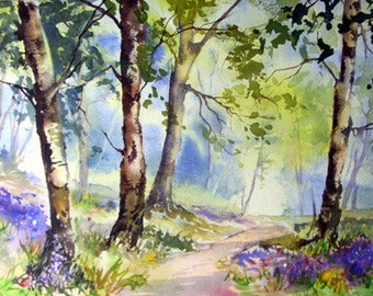 Bluebell Wood Watercolour project