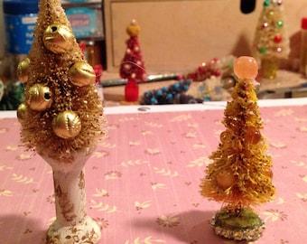 2 gold bottlebrush trees