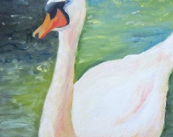 Original Oil painting of a Swan