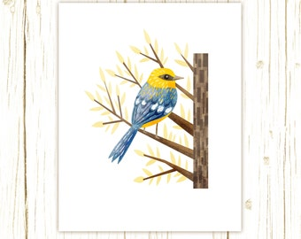 Blue-Winged Warbler Print -- bird art -- colorful bird art 52 birds stephanie fizer coleman illustration