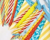 Set of TWO Extra Long Circus or Carnival Themed Fabric Bunting Banners,  Vintage and Gender Neutral, As shown.  Birthday, Weddings, Parties.