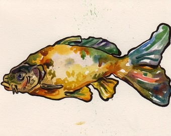 Carp - Print of Original Watercolor and Ink Painting by Jen Tracy - Fishing Fish Blub Blub