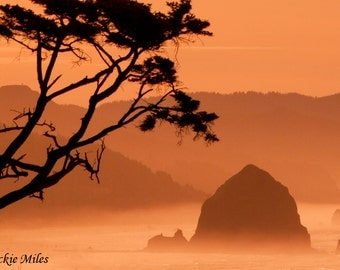 Haystack Rock at Cannon Beach, Ecola State Park, Oregon Coast, Photograph, 8x12 Print in 11x14 White Matte by Jackie Miles