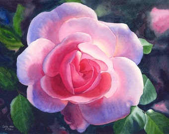 Pink Rose Art Watercolor Painting Print by Cathy Hillegas, 8x10, watercolor flower, watercolor rose, watercolor floral, red pink green blue