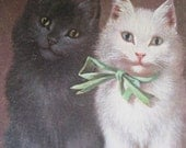 SALE !!! Antique Postcard. From my album Cats and Kittens. 1920 era. Signed Sperlich.