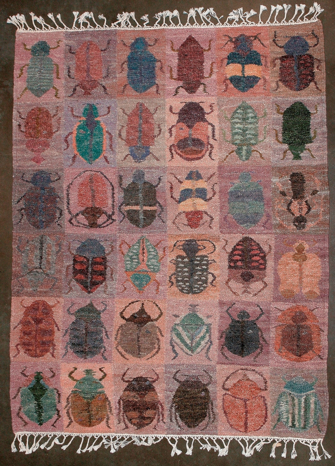 African Carpet Beetles Handwoven In Namibia 74 X