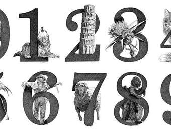 Illustrated Numbers Print