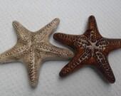 Set of Two Brown/Amber Starfish/sea shore/starfish/brown/amber/tan