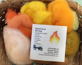 Felting Roving Kit