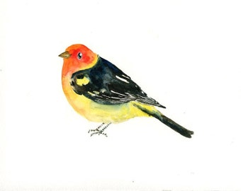 WESTERN TANAGER Original watercolor painting 10x8inch