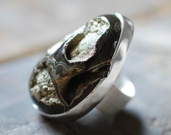 Dollybird Nautiloid Ring