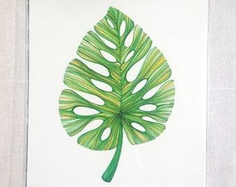 Monstera Leaf Print