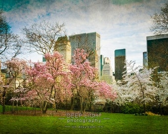 Spring in New York City Photo, Cherry Trees, Nyc Photograph, Central Park Art, Pink White Green, Wall Art nyc85