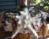 Extra Large Seashell Crown Tiara  Shabby Chic Whitewashed Nautical  Beach Crown
