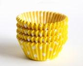MINI Cupcake Liners - Yellow Polka Dot (60)