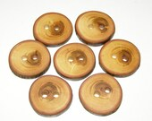 """7 Handmade plum wood Tree Branch Buttons with Bark, accessories (1,18'' diameter x 0,20"""" thick)"""