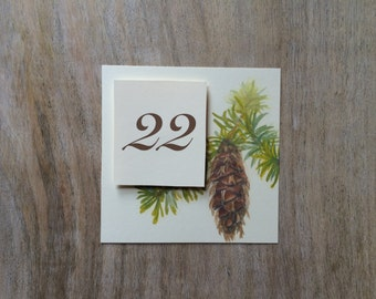 Pine Cone Table Number Tents - for Events, Weddings, Parties, Showers, Graduations.