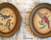 Bird Prints - vintage in oval frames