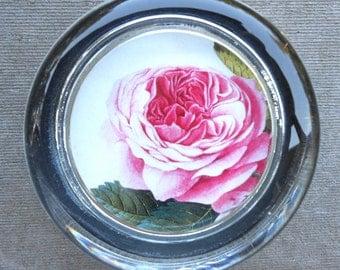 Pink English Garden Rose Paperweight