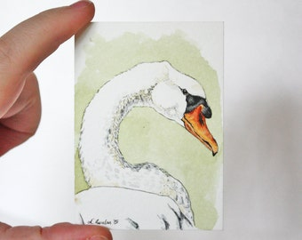 ACEO Print Swan ACEO Limited Edition Art Card Watercolor ACEO Swan Painting Collectible Art Miniature Art Unframed Art Wildlife Art