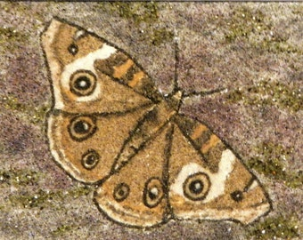 Buckeye Butterfly original sand painting 5 X 7 Ohio native butterfly painting butterfly sand art work flowers brown