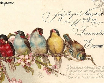 birds and flowers digital vintage antique postcard scan script printable download jpg image transfer wall art scrapbooking mixed media