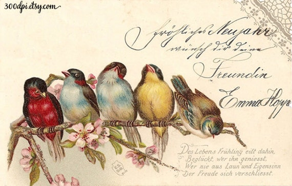 Wall Art Flowers And Birds : Birds and flowers digital vintage antique postcard scan script