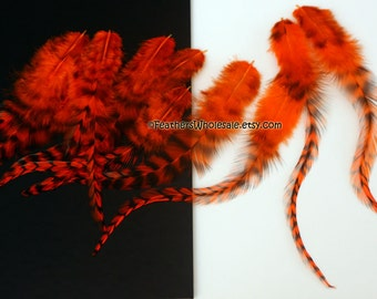 Orange Craft Feathers Fire Orange Feathers for Crafts Orange and Black Feathers Grizzly Rooster Feathers Thick Orange Feathers, 12