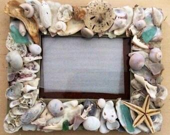 Starfish shell frame 5x7