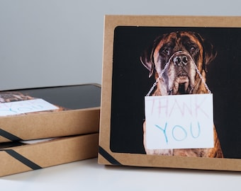 Thank You cards- Mastiff - 6 pack