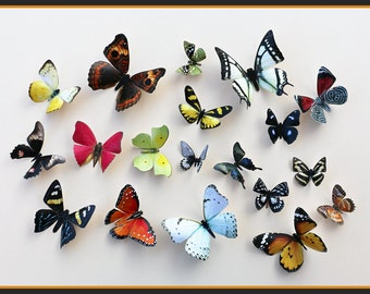 3D Wall Butterflies - 15 Colorful Butterfly Silhouettes, Nursery, Home Decor, Wedding