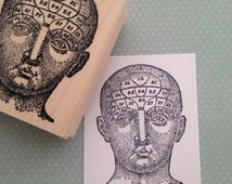 Diagramed Head  Wood Mounted Rubber Stamp  5363