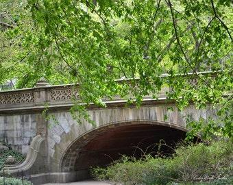 Central Park Photography, Spring, Large Wall Art, Central Park Bridge, New York Photo, NY, Greyshot, Landscape, Nature Print, Green, Trees