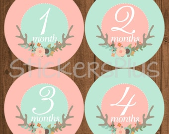 Baby Girl Monthly Stickers Precut Baby Month Stickers PRECUT Bodysuit Stickers Tribal Floral Deer Antler Antlers Baby Photo Prop Nursery