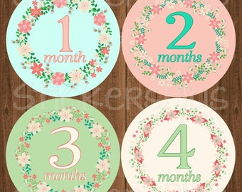 Monthly Baby Girl Stickers Baby Month Stickers Floral Flower Wreath Bodysuit Stickers Monthly Baby Age Stickers Nursery Decor Photo Prop