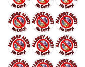 Dairy Allergy Sticker, Allergy Stickers, Dairy Allergy Alert, Allergy Alert Sticker, Personalized Allergy Stickers (432)