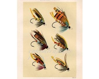 SALMON FLIES print glorious fly fishing print no. 1