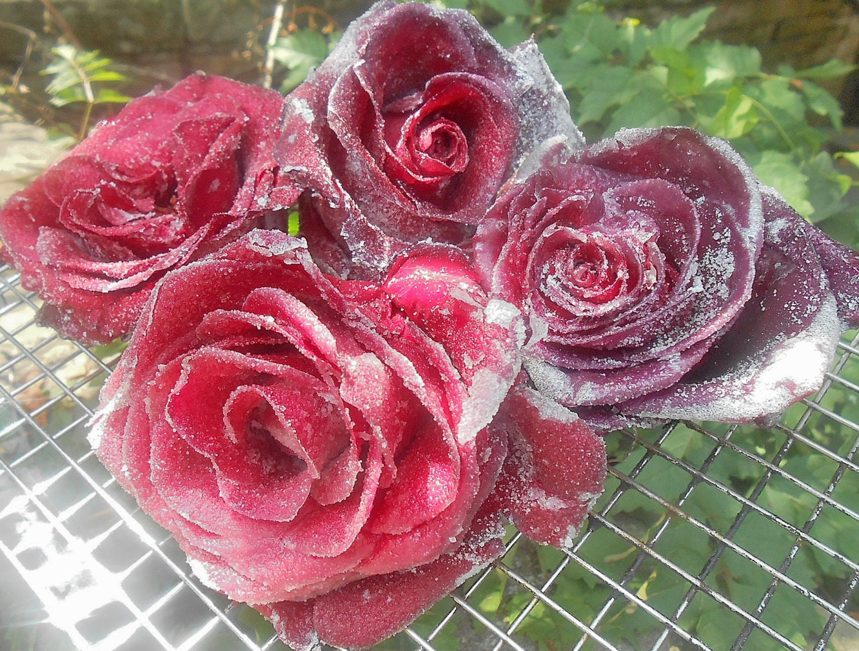 Edible Rose Cake Decoration : Sugar Coated Roses Crystallized Roses Edible Flowers