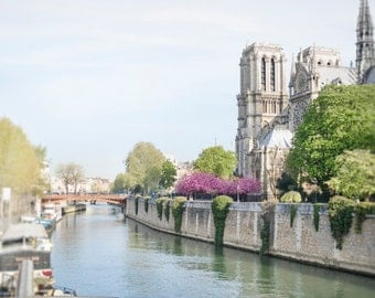 Paris Travel Photography - Spring Along the Seine, Notre Dame, Cherry Blossoms, Travel Photo, Large Wall Art, French Home Decor
