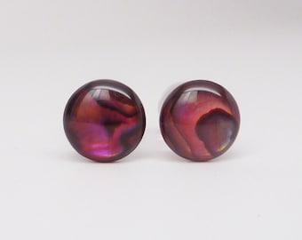 Ear Plugs, Abalone Paua Shell, 0G (8mm) Ear Gauges * Handmade clear UV acrylic plugs