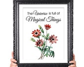 Universe is Magical, Nature Quote, Inspirational, Beach Cottage Art, Vintage Flower Art Print, Botanical Illustration, Red White Home Decor