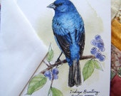 "Indigo Bunting- 4""x6"" Greeting Card Print from Original Ink and Watercolor Bird Painting"
