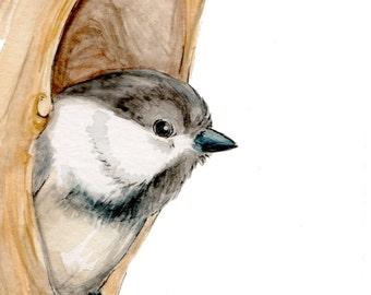 Chickadee Fine Art Print, Wildlife Art