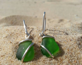 Seaweed green seaglass earrings