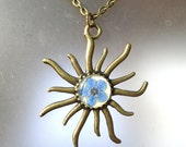 Forget-me-not Pressed Real Flower Bronze Sun Pendant. Necklace