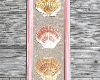 Seashell Wall Decor, Seashell Wall Art, Gorgeous Hand Painted Frame With  Scallop Shells,