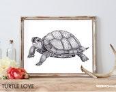 CLEARANCE Sale - Turtle Love Pattern Illustrated Art Print