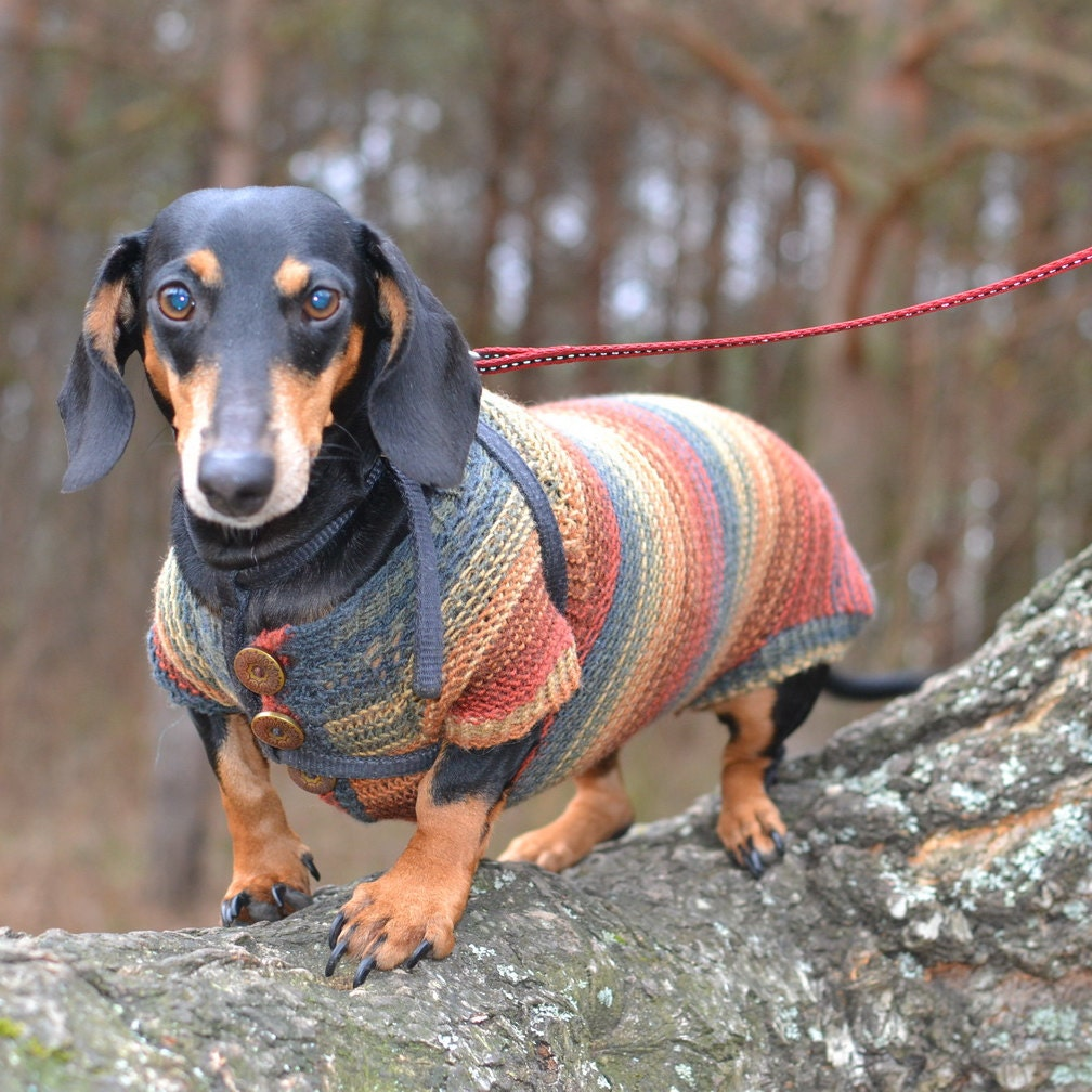 Dog Sweater Houndstooth Dachshund Sweater Dog Clothes Doxie