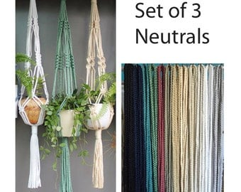 Set of 3 Macramé Plant Hangers in assorted neutral colours